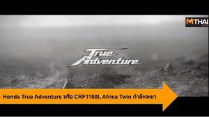 Honda True Adventure หรือว่า 2020 CRF1100L Africa Twin กำลังจะมา ?