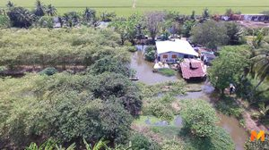 บุกรวบ! ชาวสวนเมืองปทุมฯ ลอบปลูกกระท่อมบนพื้นที่กว่า 3 ไร่