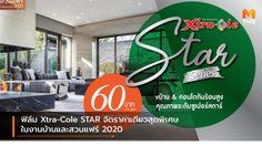 ฟิล์ม Xtra-Cole STAR จัดราคาเดียวสุดพิเศษ ในงานบ้านและสวนแฟร์ 2020