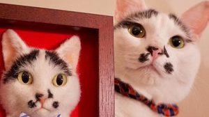 เหมือนจนแมวอึ้ง! ภาพ 3 มิติแมวเหมียว ผลงานศิลปินญี่ปุ่น