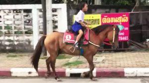 แชร์หนัก! น้องใบบัว เด็กป.2 มีความสามารถขี่ม้ากลับจากโรงเรียน