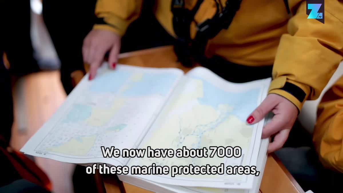 Sea Rangers