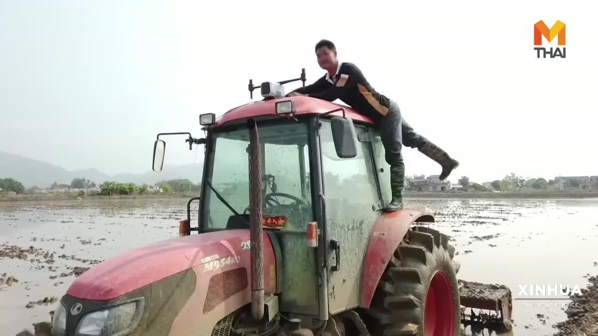 กวางตุ้งหยิบ 'เทคโนโลยีขั้นสูง' หนุนเกษตรกร 'ปลูกข้าว-รากบัวอัจฉริยะ'