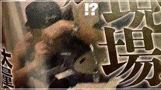 ฉาวอีก! แทบลอยด์ญี่ปุ่น แฉ ไอดอลเกาหลีชื่อดัง เสพโคเคน!!