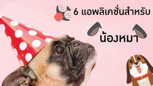 6 แอพลิเคชั่นฟรีๆ สำหรับคนเลี้ยงน้องหมา