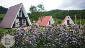 สูดไอดิน กลิ่นธรรมชาติ ณ บ้านปลายดอย ที่พักทรงสามเหลี่ยม ในดอยอินทนนท์