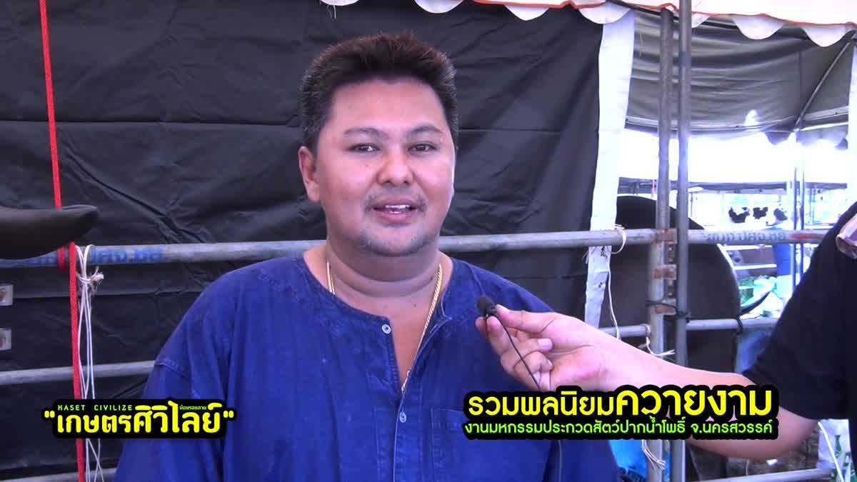 เสี่ยเบิร์ด มีสุวรรณ แนะการอนุรักษ์ควายไทย