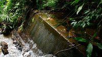 คิดให้ดีก่อนทำฝายกั้นน้ำ-ชะลอน้ำ เหตุเสี่ยงทำลายธรรมชาติ สัตว์บางชนิดสูญพันธุ์