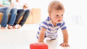 กลยุทธ์ พัฒนาการทารก 12 เดือนแรก