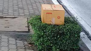 เผยแล้วผลตรวจ กล่องปริศนา วางหน้าห้างดังพระราม 2