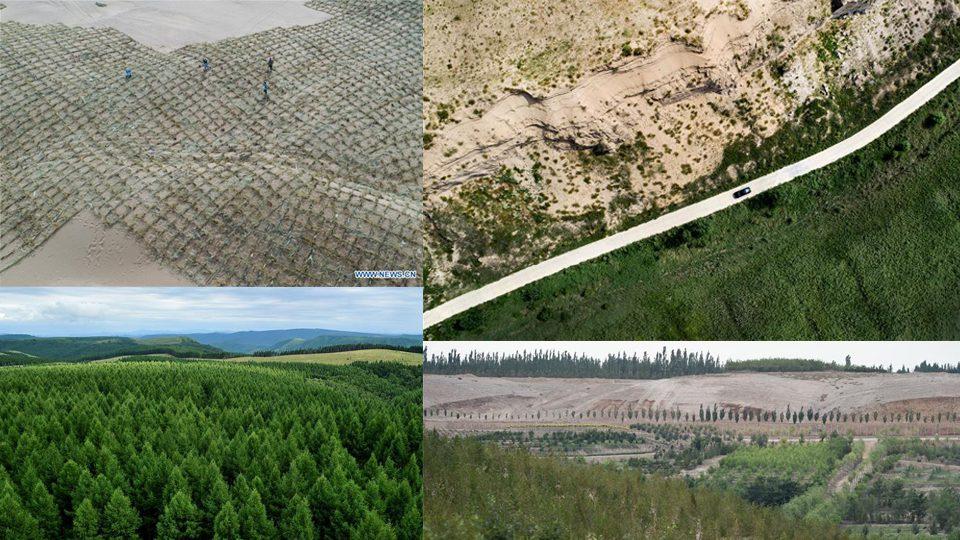 จีนตอนเหนือเพิ่มพื้นที่ 'ป่า' สำเร็จ 3 ล้านไร่ในปี 2019