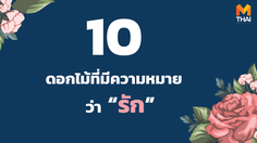 10 ดอกไม้ที่มีความหมายว่ารัก สื่อรักวันวาเลนไทน์