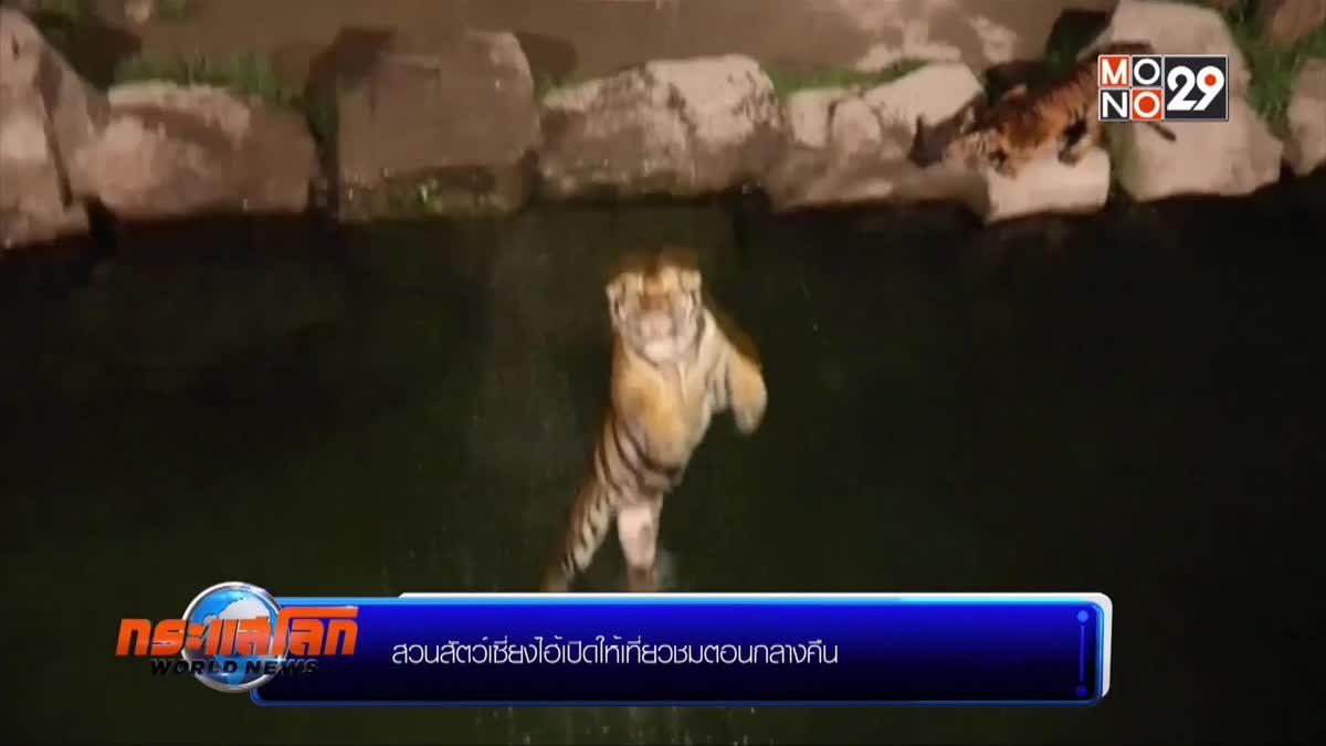 สวนสัตว์เซี่ยงไฮ้เปิดให้เที่ยวชมตอนกลางคืน