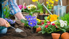 5 เทคนิคจัดสวน เองฉบับวิชามารประหยัดงบก็สวยปังได้ไม่ต้องจ้าง!