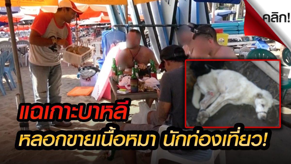 (คลิปเด่นต่างประเทศ) เนื้อสุนัขระบาดบนเกาะบาหลี ผู้ว่าฯบาหลีโต้ไม่ใช่เรื่องจริง!