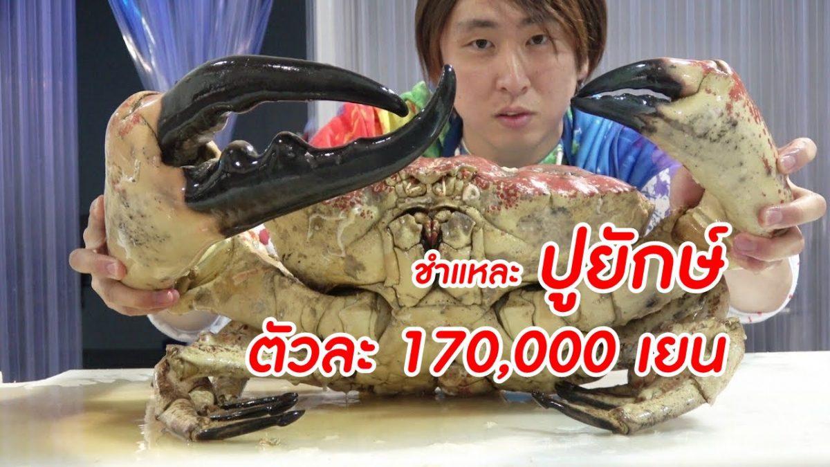 จะฟินขนาดไหน! กับการชำแหละกินปูยักษ์แทสเมเนียนคิง ราคา 170,000 เยน ก้ามใหญ่เวอร์