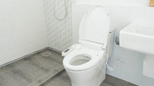 ง่ายแสนง่าย 3 ทริคช่วยกำจัด กลิ่นฉี่ในห้องน้ำ ให้อยู่หมัด