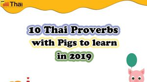 10 Thai Proverbs with Pigs to learn in 2019