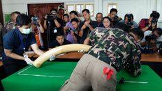 'ศรีวราห์' คาด 1 เดือน รู้ผลงาช้าง-ปืน 'เปรมชัย' ล่าสัตว์ป่าสงวน