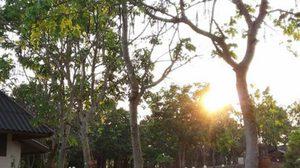 อุตุฯ เผย ทั่วไทยยังร้อนจัด! กทม.สูงสุด 38 องศาฯ
