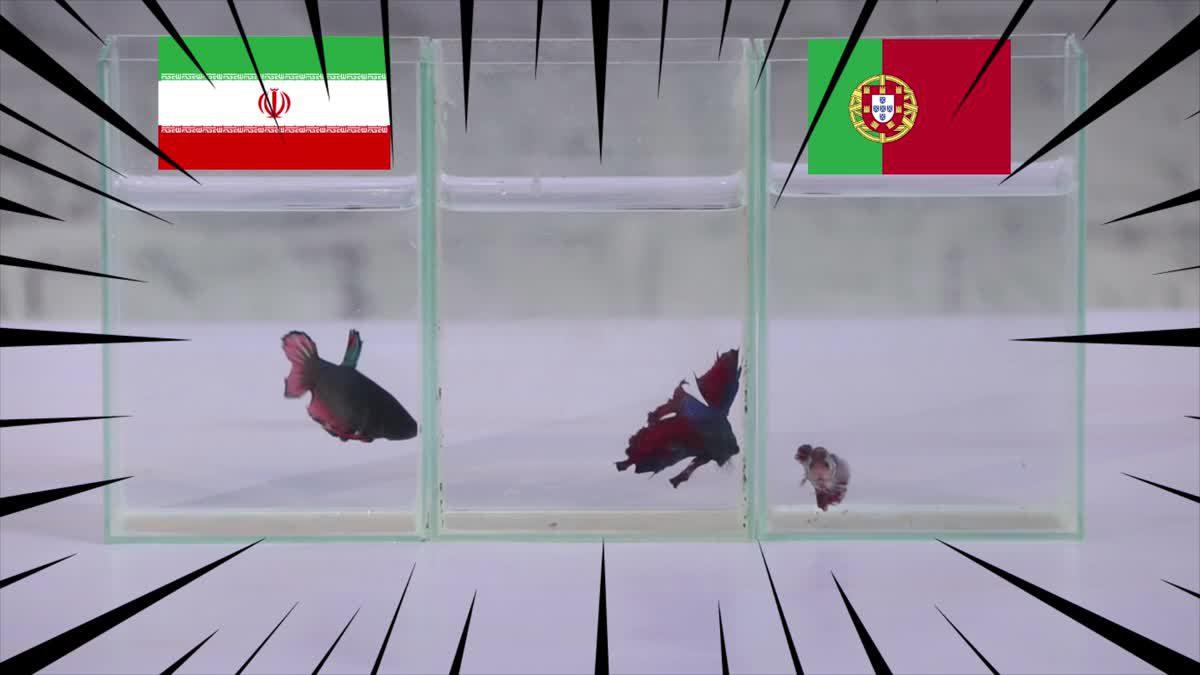 ซี้ซั้วเอามาเล่า ฟันธงฟุตบอลโลก 2018 EP 10