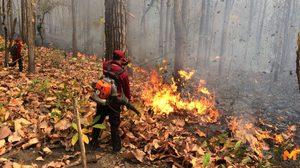 ไฟป่าแม่ฮ่องสอนยังโหมหนัก 400 กว่าจุด ค่าควันพิษพุ่ง 245 ไมโครกรัมฯ
