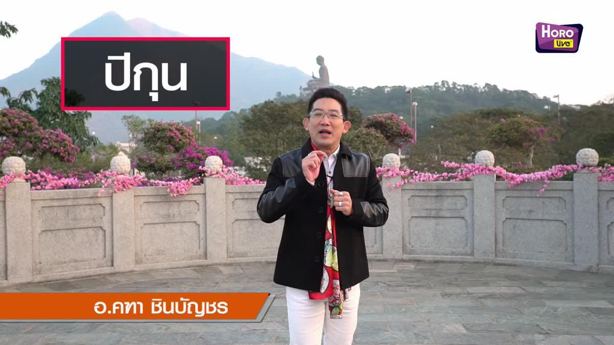 ฮวงจุ้ย คนเกิดนักษัตร กุน เดือนกุมภาพันธ์ 2562