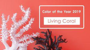 เทรนด์สีปี 2019 Pantone - Living Coral