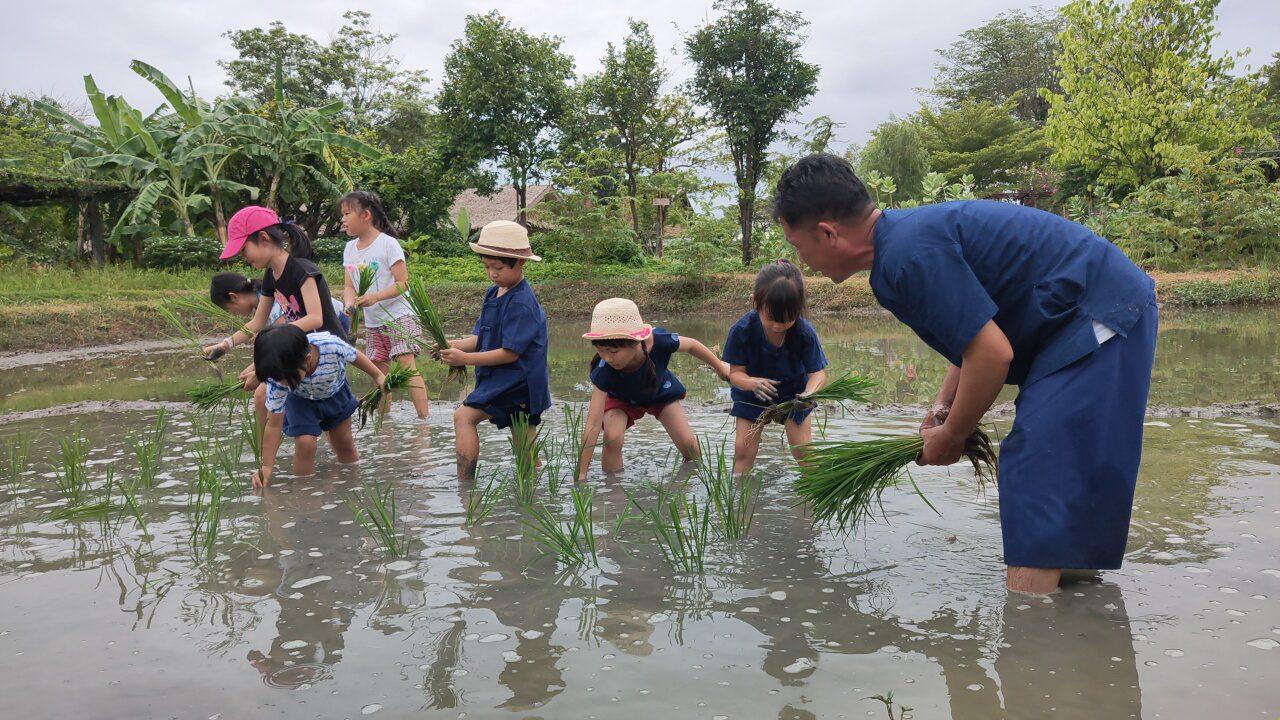 """สวนสามพราน ชวนวัยซนท่องโลกเรียนรู้ """"วิถีกิน-อยู่อย่างไทย...ใส่ใจสิ่งแวดล้อม"""""""