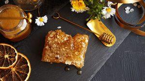 """ดีต่อผิว น้ำผึ้งมานูก้า ประโยชน์ไม่ธรรดาสมฉายา """"ราชินีแห่งน้ำผึ้ง"""""""