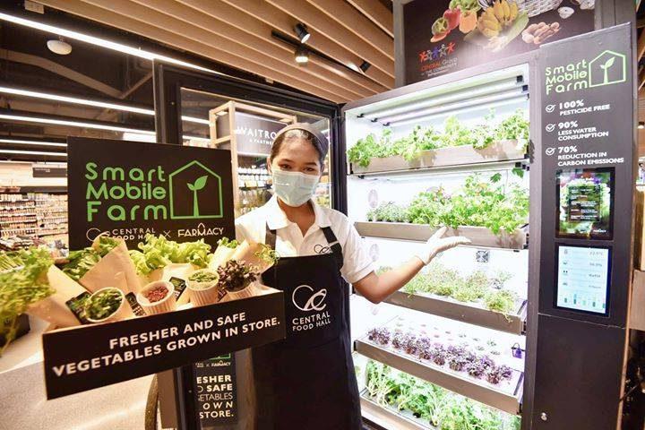 """Smart Mobile Farm"" ตู้ปลูกผักปลอดสาร เปิดตัวครั้งแรกที่ เซ็นทรัล ฟู้ด ฮอลล์ สาขาชิดลม"