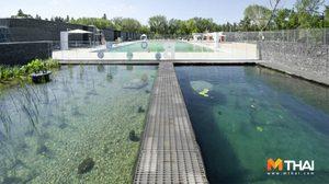 คนแพ้คลอรีนมีเฮ สระว่ายน้ำปลอดสารเคมี รักษ์โลกมีอยู่จริง