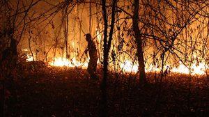 ไฟป่าแคลิฟอร์เนียตายแล้ว 23 คน หลายพื้นที่เสียหาย