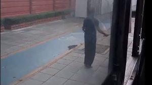 ชาวเน็ตฮาสนั่น โชเฟอร์รถเมล์ กระโดดเชือกออกกำลังกาย ระหว่างรอรถติด