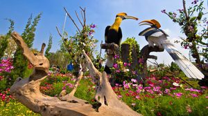 สวนนกชัยนาท สวนแห่งความสุขสนุกสนาน