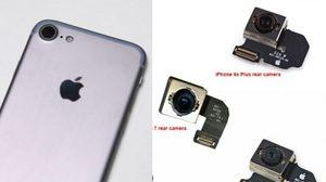 ดีงาม!! หลุดภาพกล้อง iPhone 7 จะมาพร้อมระบบกันสั่น OIS