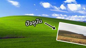 Windows XP ฉลองครบรอบ 20 ปี กับภาพวอลเปเปอร์ในตำนาน!!!