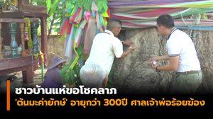 ชาวบ้านแห่ขอโชคลาภ 'ต้นมะค่ายักษ์' อายุกว่า 300 ปี