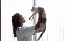 "Seeme ปล่อยหนังสั้นโรแมนติก ""เนโกะ ฉันอยากเป็นแมว"""