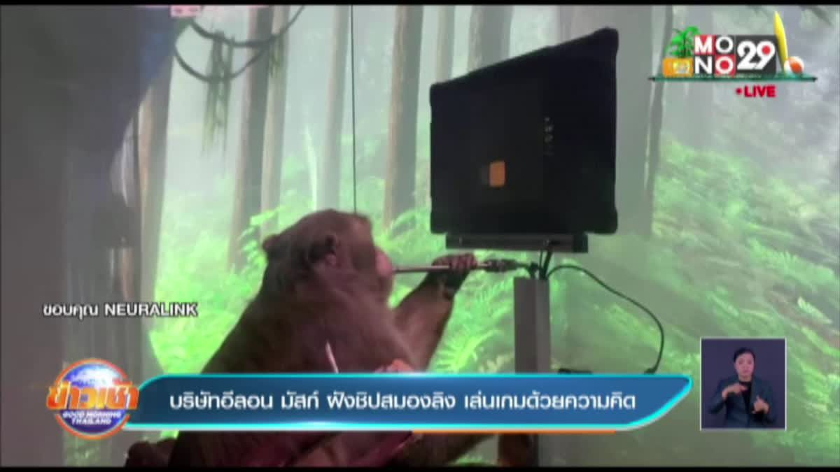 บริษัทอีลอน มัสก์ ฝังชิปสมองลิง เล่นเกมด้วยความคิด