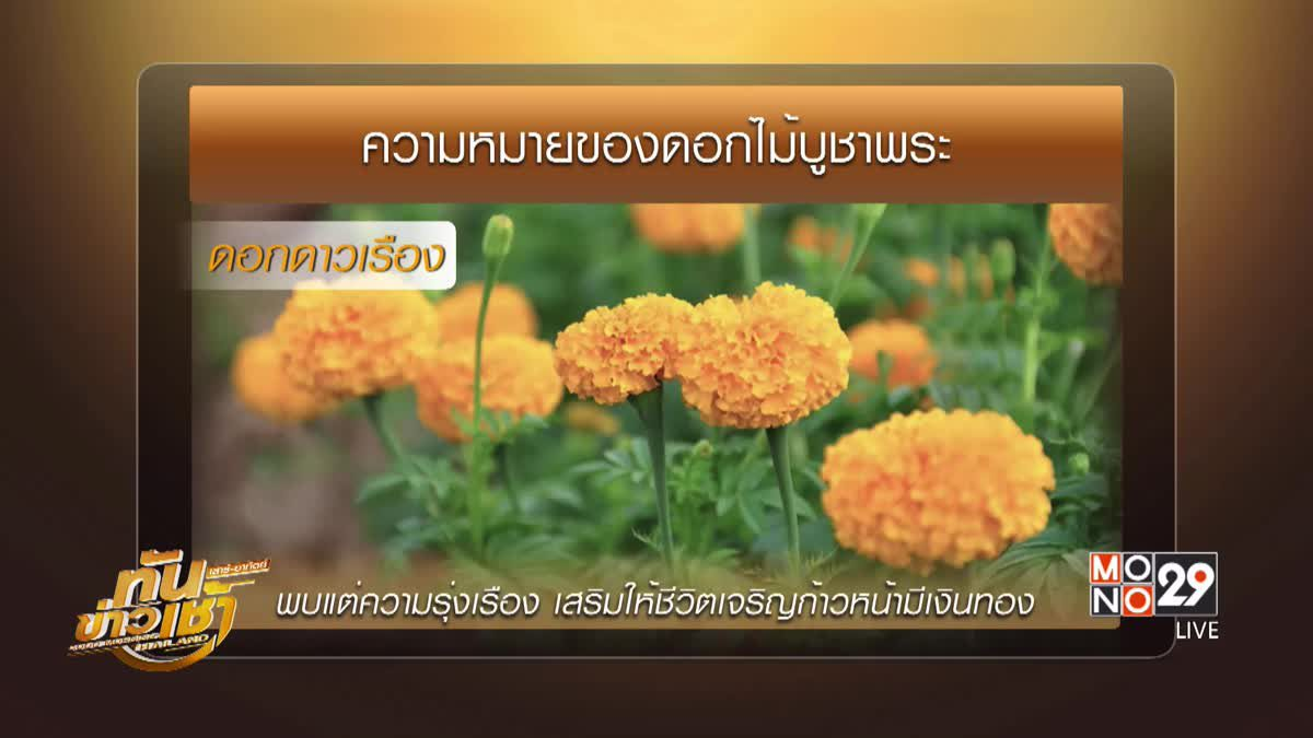 อานิสงส์ผลบุญ จากการเลือกดอกไม้ไหว้พระ ที่ครบทั้ง 3 ประการ