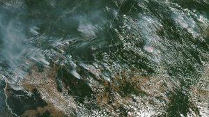 วิกฤต ! ไฟป่าแอมะซอนยังคุมไม่ได้ ควันปกคลุมนครเซาเปาโลค่าฝุ่นพิษพุ่ง