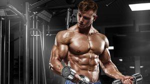 การออกกำลังกายให้กล้ามเนื้อได้ใช้งานได้เต็มที่ ออกยังไงให้ฟิตและเฟิร์ม
