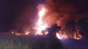 ระทึก! ไฟไหม้ป่าพรุพังงา กว่า 30 ไร่ หวั่นลุกลาม