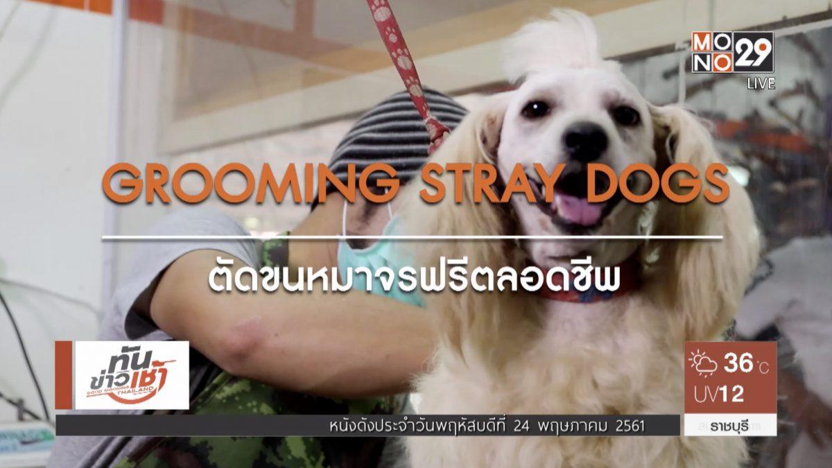 คนดีเปลี่ยนโลก Man Changes the World  ตอน:ตัดขนหมาจรฟรีตลอดชีพ