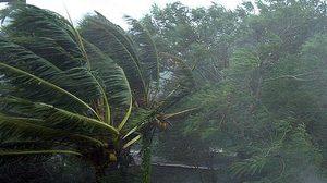 อุตุฯ เตือน เหนือ-อีสาน-ตะวันออก มีพายุฝนฟ้าคะนอง
