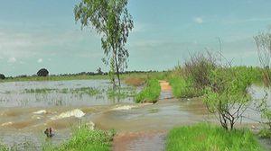 สุพรรณ-สิงห์บุรี-อ่างทอง-ชัยนาท อ่วม เจอน้ำท่วมขังหลายจุด