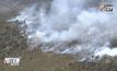 ไฟป่าลุกลามในออสเตรเลีย