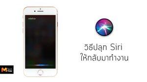 วิธีทำให้ Siri กลับมาใช้ได้อีกครั้ง หาก Siri ไม่ทำงาน