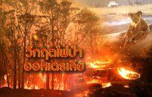 วิกฤตไฟป่าออสเตรเลีย 10-01-63